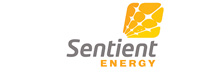 Sentient Energy: Transforming the 21st Century Distribution Grid